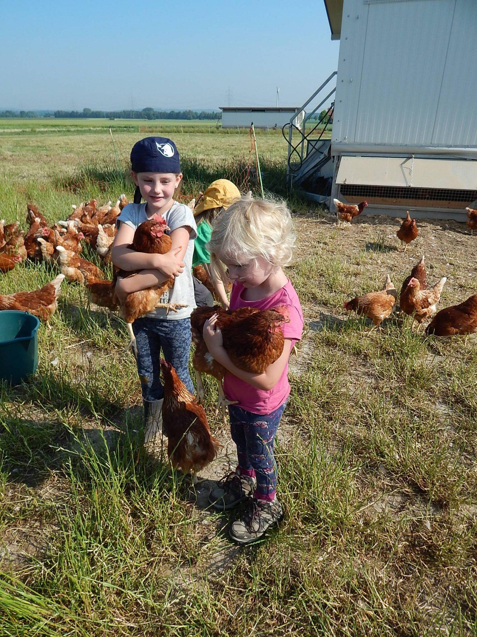 Waldkindergarten besucht Hühnerhof